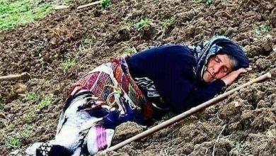 Photo of صورة اليوم :ونحن نحتفل بعيد المرأة فئة منسية اثقلتها المتاعب …